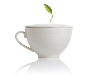 白瓷咖啡杯 Café Cup